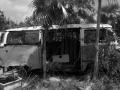 Cat Island / Bahamas 2004